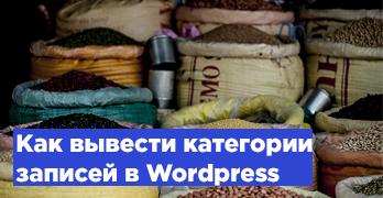 Как вывести категории записей в WordPress